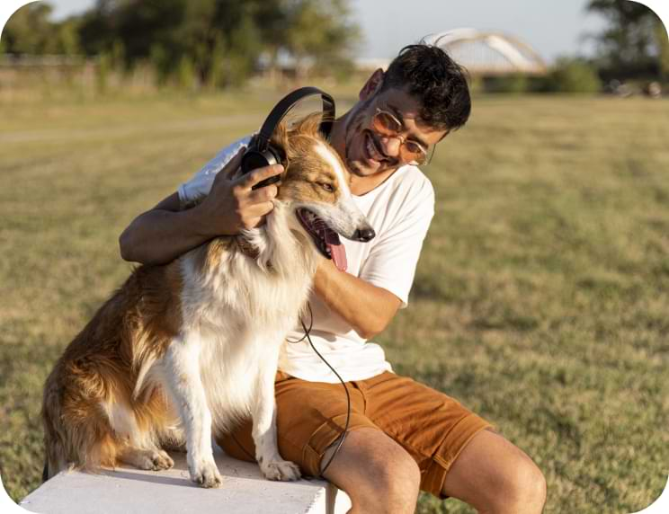Physiotherapy & Exercise Physiology For Dogs - New Life Vet